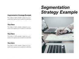 Segmentation Strategy Example Ppt Powerpoint Presentation Portfolio Themes Cpb