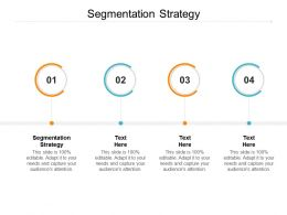 Segmentation Strategy Ppt Powerpoint Presentation Ideas Background Images Cpb