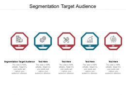 Segmentation Target Audience Ppt Powerpoint Presentation Layouts Example Cpb