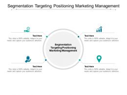 Segmentation Targeting Positioning Marketing Management Ppt Powerpoint Presentation Model Cpb