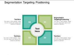 Segmentation Targeting Positioning Ppt Powerpoint Presentation Infographic Template Good Cpb