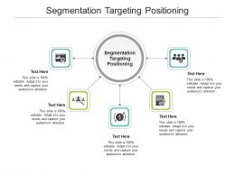 Segmentation Targeting Positioning Ppt Powerpoint Presentation Styles Template Cpb