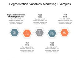 Segmentation Variables Marketing Examples Ppt Powerpoint Presentation Gallery Icons Cpb