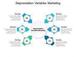 Segmentation Variables Marketing Ppt Powerpoint Presentation Inspiration Icons Cpb