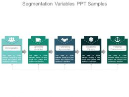 Segmentation Variables Ppt Samples