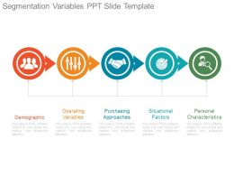 Segmentation Variables Ppt Slide Template