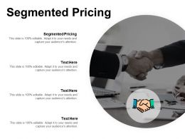 segmented_pricing_ppt_powerpoint_presentation_ideas_picture_cpb_Slide01