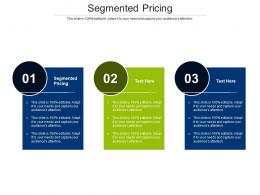 Segmented Pricing Ppt Powerpoint Presentation Infographic Template Background Image Cpb
