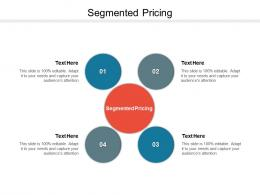 Segmented Pricing Ppt Powerpoint Presentation Summary Cpb