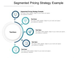 Segmented Pricing Strategy Example Ppt Powerpoint Presentation Inspiration Cpb