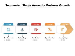 Segmented Single Arrow For Business Growth