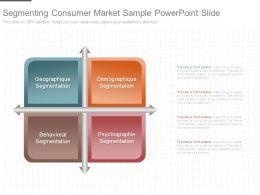 Segmenting Consumer Market Sample Powerpoint Slide