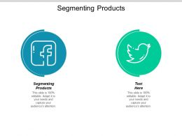 Segmenting Products Ppt Powerpoint Presentation Slides Example Introduction Cpb