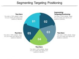 Segmenting Targeting Positioning Ppt Powerpoint Presentation Show Objects Cpb