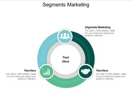 Segments Marketing Ppt Powerpoint Presentation Infographic Template Graphics Example Cpb