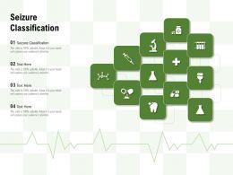 Seizure Classification Ppt Powerpoint Presentation Model