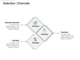 Selection Channels Ppt Powerpoint Presentation Professional Introduction Cpb