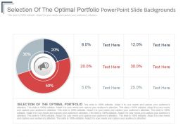 Selection Of The Optimal Portfolio Powerpoint Slide Backgrounds