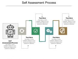 Self Assessment Process Ppt Powerpoint Presentation Ideas Mockup Cpb