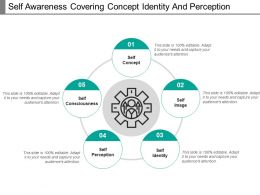 Self Awareness Covering Concept Identity And Perception