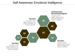 Self Awareness Emotional Intelligence Ppt Powerpoint Presentation Slides Example Cpb