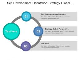 Self Development Orientation Strategy Global Perspective Operational Excellence