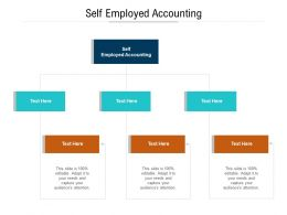 Self Employed Accounting Ppt Powerpoint File Slide Download Cpb