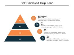 Self Employed Help Loan Ppt Powerpoint Presentation Layouts Tips Cpb