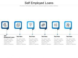 Self Employed Loans Ppt Powerpoint Presentation Infographics Examples Cpb