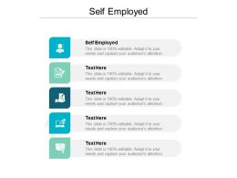 Self Employed Ppt Powerpoint Presentation Outline Layouts Cpb
