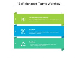 Self Managed Teams Workflow Ppt Powerpoint Presentation Slides Shapes Cpb