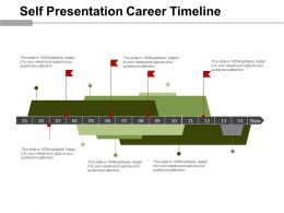 Self Presentation Career Timeline Example Of Ppt