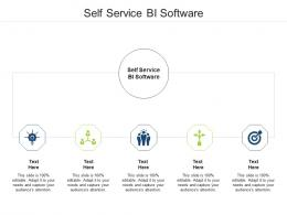 Self Service Bi Software Ppt Powerpoint Presentation Infographic Template Introduction Cpb