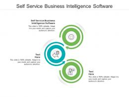 Self Service Business Intelligence Software Ppt Powerpoint Sample Cpb