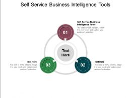 Self Service Business Intelligence Tools Ppt Powerpoint Presentation Pictures Smartart Cpb