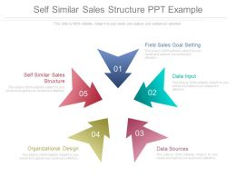 Self Similar Sales Structure Ppt Example