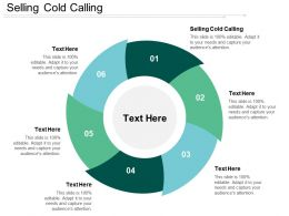 Selling Cold Calling Ppt Powerpoint Presentation Show Examples Cpb