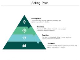 Selling Pitch Ppt Powerpoint Presentation Model Elements Cpb