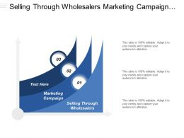 Selling Through Wholesalers Marketing Campaign Geographic Segmentation Customer Expectations