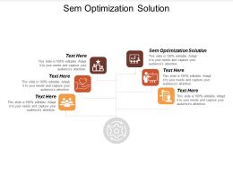 Sem Optimization Solution Ppt Powerpoint Presentation Outline Graphic Images Cpb