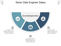 Senior Data Engineer Salary Ppt Powerpoint Presentation File Clipart Images Cpb
