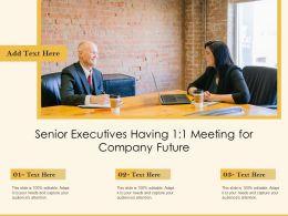 Senior Executives Having 1 1 Meeting For Company Future