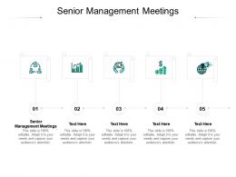 Senior Management Meetings Ppt Powerpoint Presentation Slides Visuals Cpb