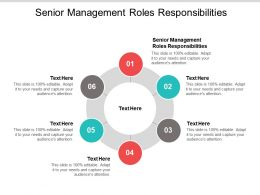 Senior Management Roles Responsibilities Ppt Powerpoint Presentation Inspiration Model Cpb