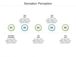 Sensation Perception Ppt Powerpoint Presentation Summary Samples Cpb