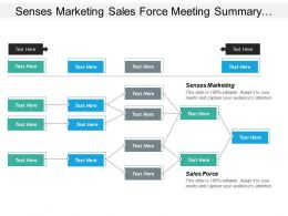 Senses Marketing Sales Force Meeting Summary Agile Applications Cpb