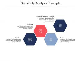 Sensitivity Analysis Example Ppt Powerpoint Presentation Diagrams Cpb