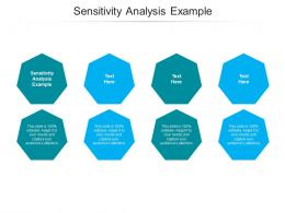 Sensitivity Analysis Example Ppt Powerpoint Presentation Professional Format Ideas Cpb