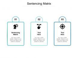 Sentencing Matrix Ppt Powerpoint Presentation Inspiration Vector Cpb