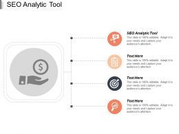 Seo Analytic Tool Ppt Powerpoint Presentation Icon Sample Cpb